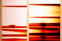 9. Irradias, 2003, papel fotografico encontrado, sobre madera. 30 x 35cm